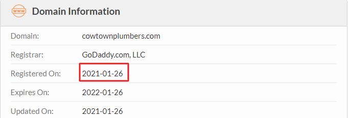 Domain Age (Whois)