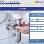 Plumbing Websites Example