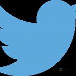 Birdie Tweet Logo