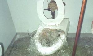 plumbing seo 1